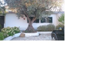 Nice 1 bedroom House in Loures - Loures vacation rentals