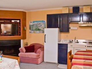 1 bedroom Apartment with Internet Access in Big White - Big White vacation rentals