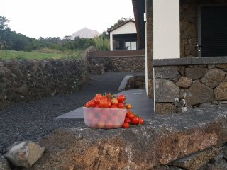 Vila Paim - Top House - Cottage in Pico - Great Views - Sao Roque do Pico vacation rentals