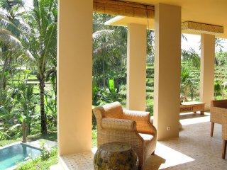 Serenity Villa - Sayan vacation rentals