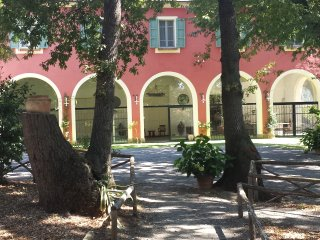 Spacious Villa with Internet Access and Patio - Vada vacation rentals