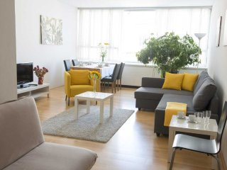 City smile: spacious & modern studio in the center - Vienna vacation rentals
