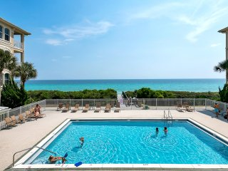 Charming Condo with Internet Access and Television - Inlet Beach vacation rentals