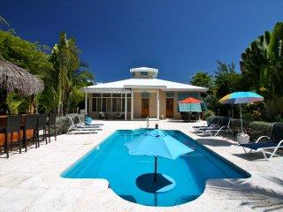 Barefoot Palms Villa *Fall Special Sept, Oct, Nov* - Grace Bay vacation rentals