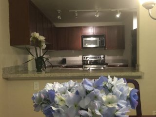 2 bedroom apt minutes to shopping mall 紧邻商业区的全家具公寓 - Bellevue vacation rentals