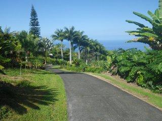 RoJo Coffee Retreat  https://youtu.be/KCuOBXPfTY8 - Captain Cook vacation rentals