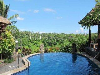UURH 61 - Ubud vacation rentals