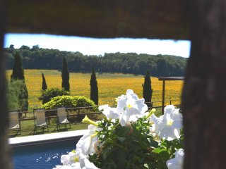 Charming private Villa,Pool,Hot tub,Wi-Fi, near Siena - SPECIAL PRICES 2017!!! - Siena vacation rentals