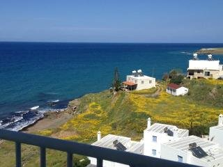 Nice Condo with Internet Access and A/C - Pachyammos vacation rentals