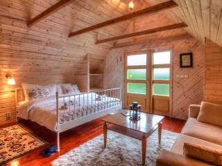 Perfect 1 bedroom Cabin in Velika Plana - Velika Plana vacation rentals