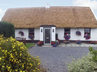Port Laoise, Slieve Bloom Mountains, County Laois - 10387 - Portlaoise vacation rentals