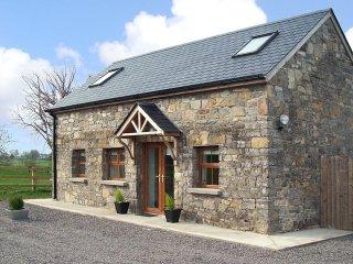 Trim, East Coast, County Meath - 11377 - Trim vacation rentals
