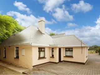 Trim, Boyne Valley, County Meath - 14911 - Trim vacation rentals