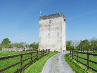 Kilmaine, Joyce Country, County Mayo - 15760 - Kilmaine vacation rentals