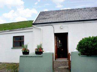 Brandon, Dingle Peninsula, County Kerry - 4050 - Cloghane vacation rentals