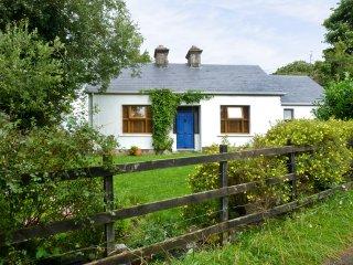 Pontoon, Lough Conn, County Mayo - 5124 - Pontoon vacation rentals