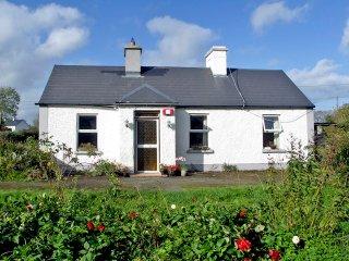 Portumna, Lough Derg, County Galway - 5141 - Portumna vacation rentals