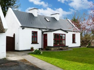 Gort, The Burren, County Galway - 5926 - Gort vacation rentals