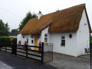 Clough, Portlaoise, County Laois - 6649 - Ballacolla vacation rentals