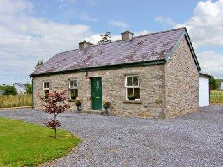 Ballaghaderreen, Lough Gara, County Roscommon - 7771 - Ballaghaderreen vacation rentals
