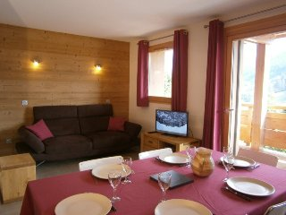 Nice Condo with Washing Machine and Television - Le Grand-Bornand vacation rentals