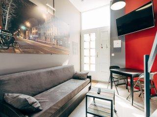 Appartement Ledin GAUCHE - Saint Etienne City Room - Saint-Étienne vacation rentals