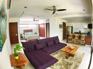 LG11 Modern & Spacious Luxury Loft with Beach Club - Akumal vacation rentals