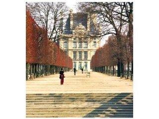 St Honoré - Paris vacation rentals