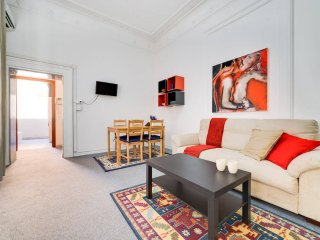Large and comfortable flat in the City Center - Roma vacation rentals