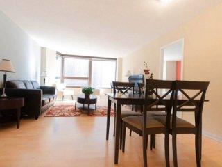 Beautiful 3 Bed 2 Bath Apartment - Addison vacation rentals