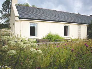 Shush, can you hear that? The sound of the country - Rostrevor vacation rentals