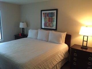 Furnished 2-Bedroom Apartment at Brookdale Rd & Westminster Dr Naperville - Naperville vacation rentals