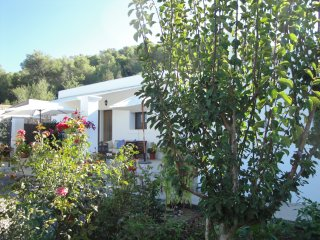 2 bedroom Cottage with Internet Access in San Miguel - San Miguel vacation rentals