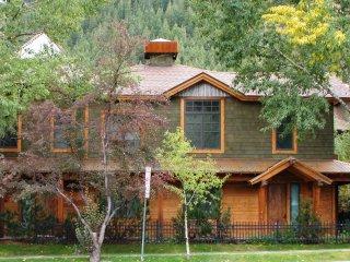 Christiana Lodge A-204 ~ RA86717 - Aspen vacation rentals