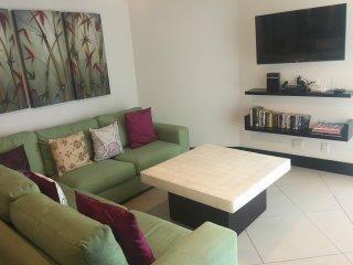 BVG Marina 1001C 1Br Ocean View - Ixtapa vacation rentals