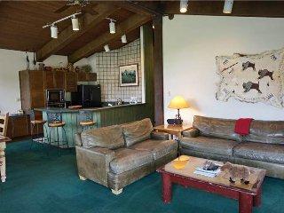 Enclave 313 - Snowmass Village vacation rentals