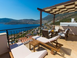 Perfect Villa with Internet Access and A/C - Unye vacation rentals