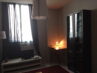 Appartement 37m2 proche gare, centre + terrasse - Grenoble vacation rentals
