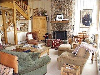 1131 Faraway Rd (***********) - Snowmass Village vacation rentals