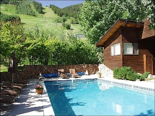Mountain Elegance - Great Views! (8113) - Aspen vacation rentals