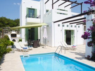 Villa Alexander, sea views & private pool - Gennadi vacation rentals