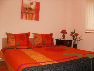 Orange flower 6 - Sofia vacation rentals