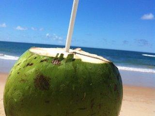 Praia de Genipabu, Guarajuba, Bahia - Guarajuba vacation rentals