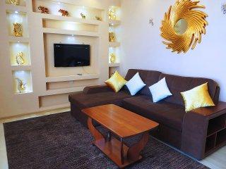 Excellent apartment in the center - Bishkek vacation rentals