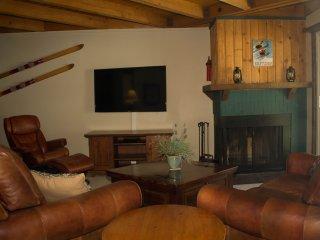 Summit Scene Getaway at Treehouse - Silverthorne vacation rentals