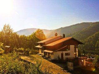 An Idyllic Retreat on the Edge of Transylvania - Azuga vacation rentals