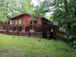 Comfortable 3 bedroom Windermere Cabin with Deck - Windermere vacation rentals