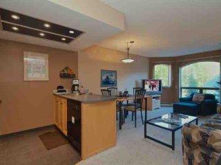 Top Floor Beautiful Marquise 1 Bedroom Condo - Whistler vacation rentals