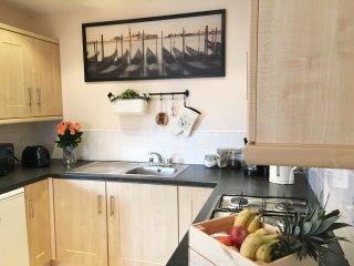 Bright & Modern 2 Bedroom Apartment - Belfast vacation rentals