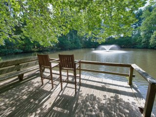 Asheville's Hidden Pond - 6 miles to downtown Avl - Asheville vacation rentals